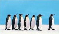 Dünya Genelinde En Yaygın 10 Liderlik Stili
